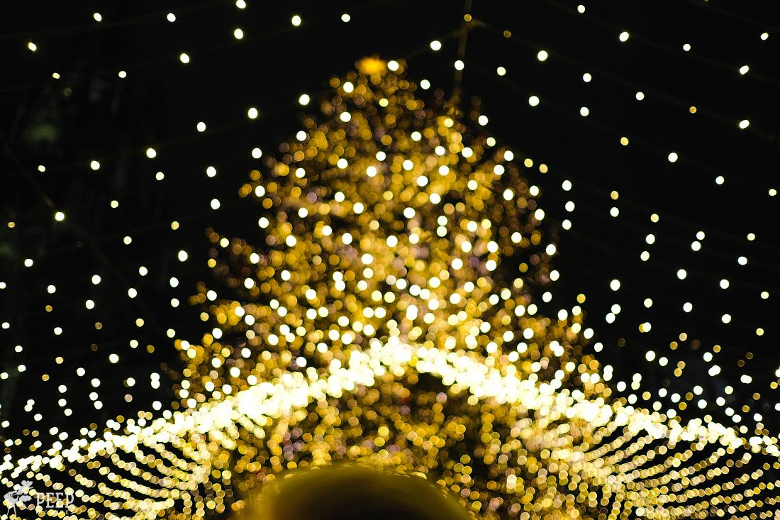 https://img.ewelt.org/pics/upashi/Germany/2017/Weihnachtsmarkt/Cologne/20171205_181644_X-T2_9956.jpg