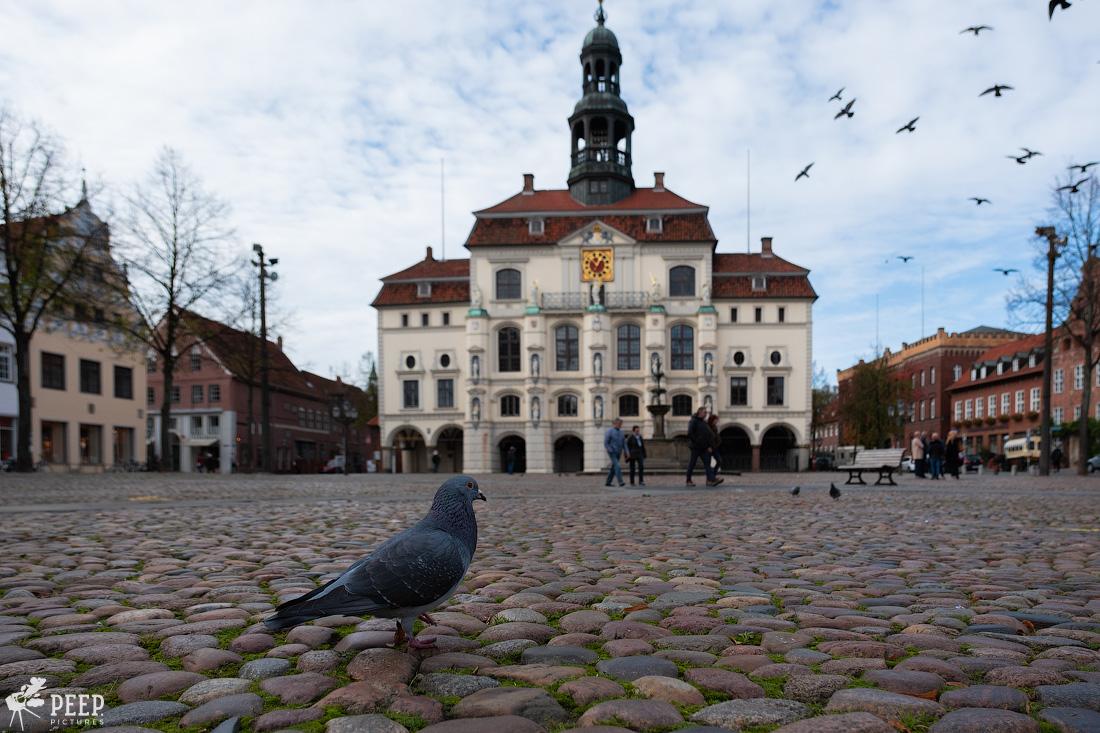 https://img.ewelt.org/pics/upashi/Germany/2019/Luneburg/20191027_130403_X-T2_2742.jpg