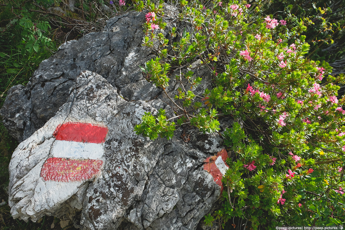 https://img.ewelt.org/pics/upashi/Italy/2016/Dolomites/Langental/20160802_174104_Pro2_8766.jpg