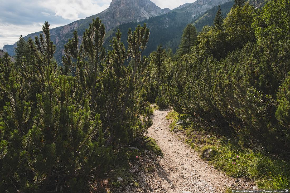 https://img.ewelt.org/pics/upashi/Italy/2016/Dolomites/Langental/20160802_174501_Pro2_8768.jpg