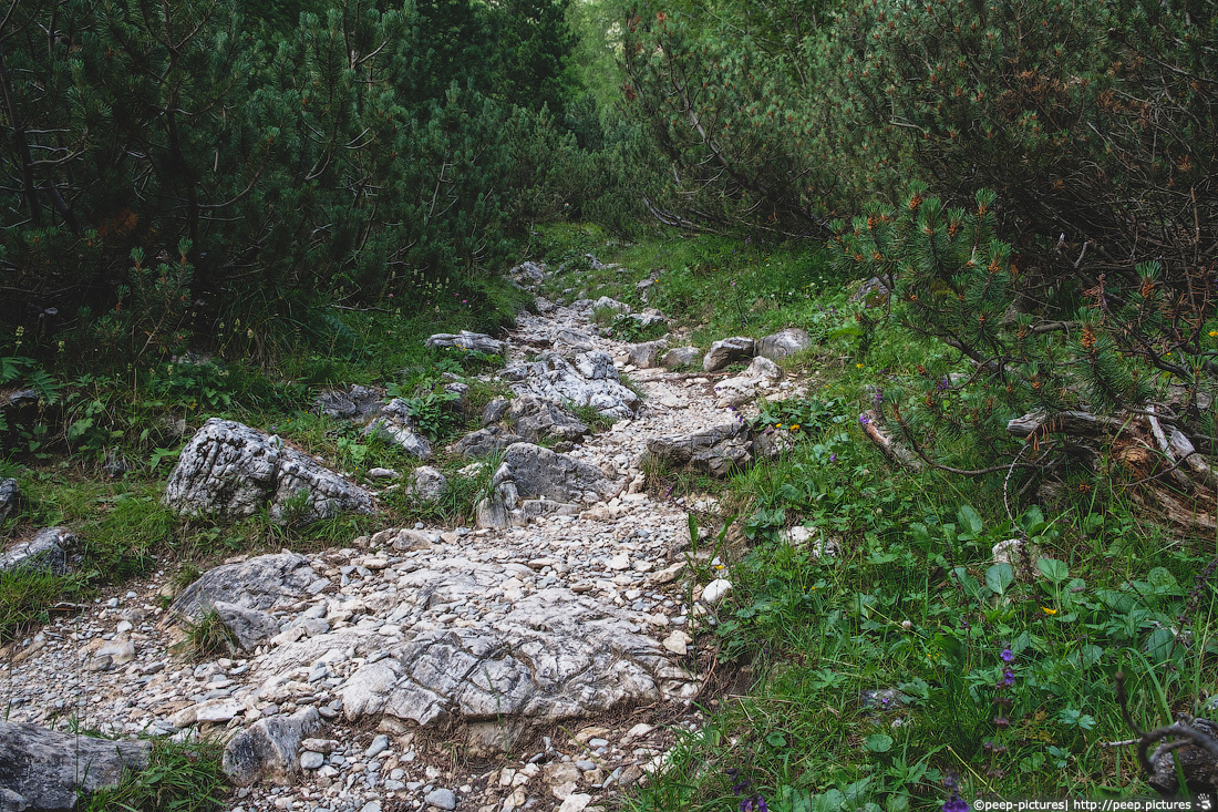 https://img.ewelt.org/pics/upashi/Italy/2016/Dolomites/Langental/20160802_174958_Pro2_8770.jpg