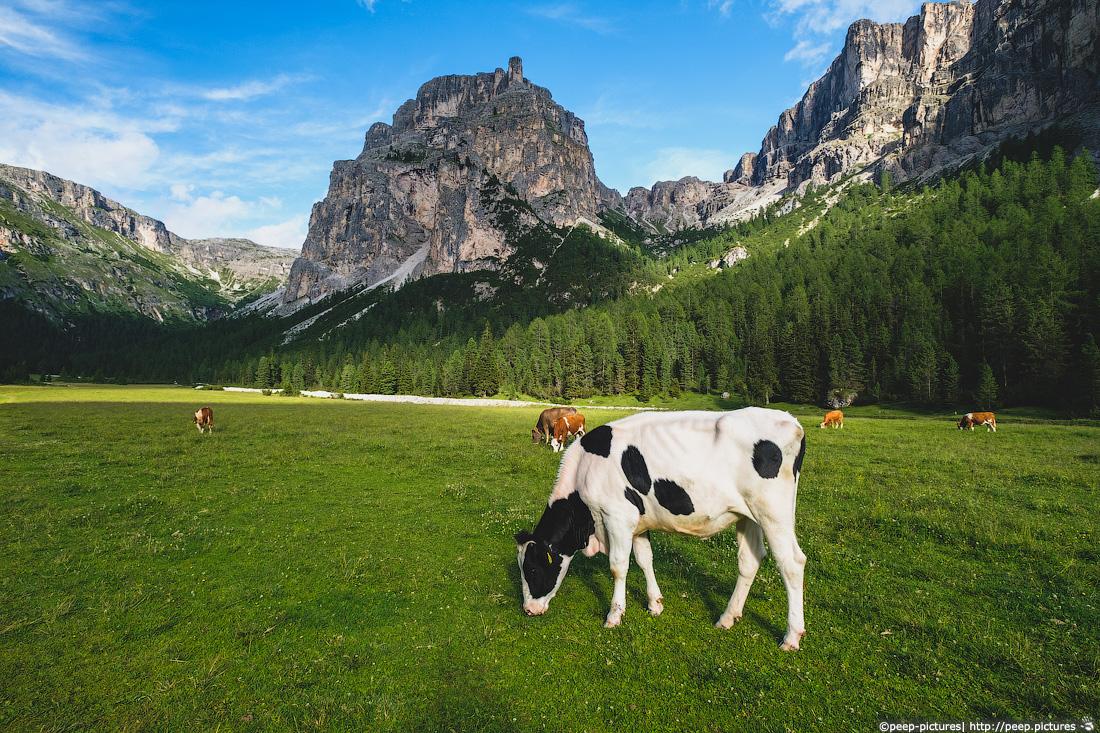 https://img.ewelt.org/pics/upashi/Italy/2016/Dolomites/Langental/20160802_182032_Pro2_8792.jpg